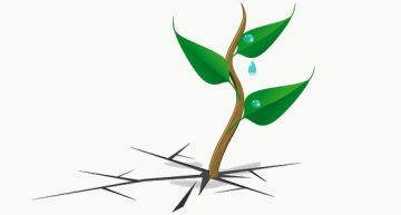 Comment survivre après la troisième génération ? – Ashok Som (ESSEC)